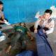 Pengamen Jalanan Kota Malang Tewas Mendadak