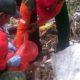 Dekat Perumahan Lowokwaru, Bayi Dilempar ke Sungai
