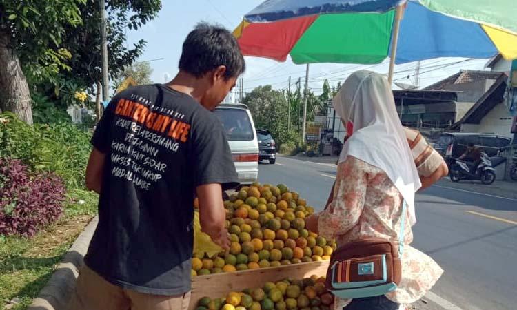 Pedagang jeruk, Tofa saat melayani konsumen.(mg2)